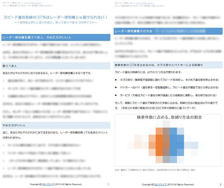 free-report-sample