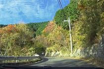 【動画あり】箱根の抜け道、足柄幹線林道